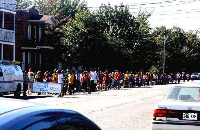 Les Pattes de l'espoir: une marche qui rapporte pour une 12e année