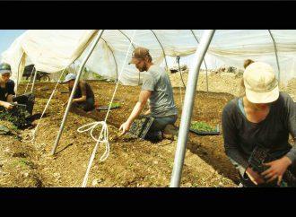 Projection du documentaire «La ferme et son État» dans le cadre des Rendez-vous Québec Cinéma à la Maison de la Culture de L'Avenir