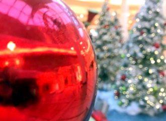 Raconte-moi l'histoire…  Le premier arbre de Noël au Canada, par André Pelchat