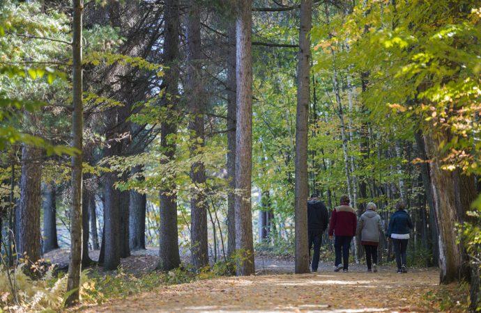 La MRC de Drummond déposera une offre pour l'acquisition de la Forêt Drummond