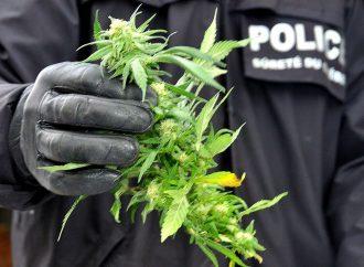 Revenus du cannabis – La part municipale doit aller directement aux municipalités