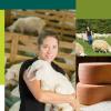 La Financière agricole du Centre-du-Québec présente son bilan 2016-2017