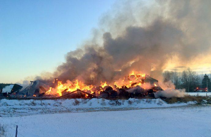 Suite à l'incendie de leur bâtiment de ferme, un jeune couple demande de l'aide