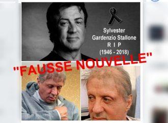Sylvester Stallone est-il décédé ?