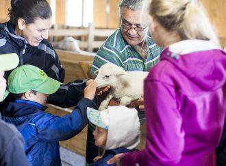 Plus de 150 000 visiteurs pour la 16e édition de la journée Portes ouvertes sur les fermes du Québec