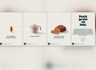 Une première campagne pour les Producteurs de grains du Québec  « Petit grain va loin »
