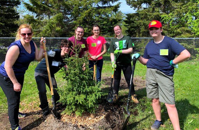 L'école secondaire Marie-Rivier se mobilise contre l'agrile du frêne!