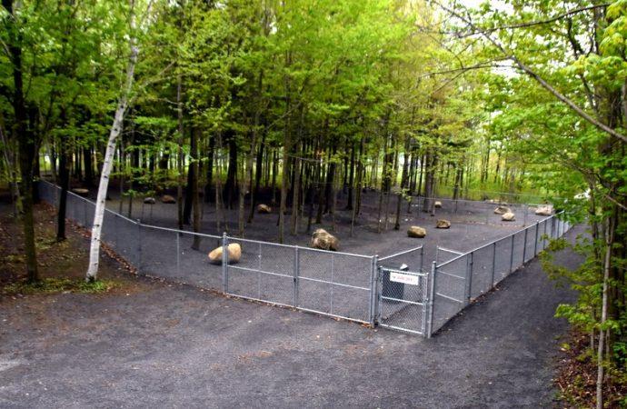 Inauguration du parc canin Hôpital Vétérinaire Caouette et Rochon, une nouvelle installation pour la population