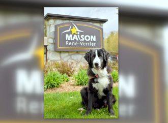 Une première au Québec – Un chien MIRA dans une maison de soins palliatifs