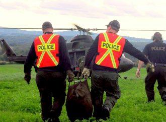 Opération et perquisition de la Sûreté du Québec, des Forces armées canadiennes et de la GRC