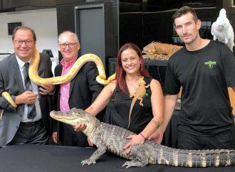 Des centaines d'animaux exotiques à voir et à découvrir au Centrexpo Cogeco de Drummondville