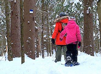 Journée d'hiver Sépaq 2020 – Accès gratuit à une nature amusante et apaisante