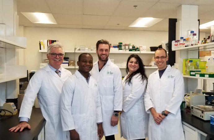 Santé Canada octroie une importante licence de recherche sur le cannabis à La Feuille Verte de Drummondville