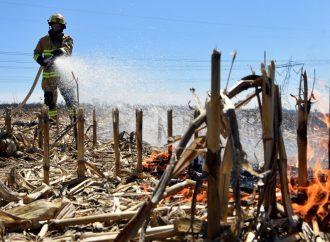 Appel à la prudence à Drummondville – Un printemps hâtif, propice à l'éclosion de feux de végétation