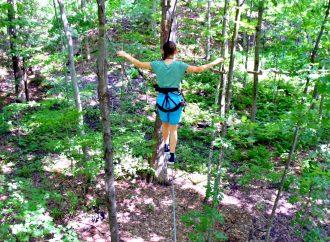 Tout est en place pour une nouvelle saison d'aventures à D'Arbre en arbre Drummondville