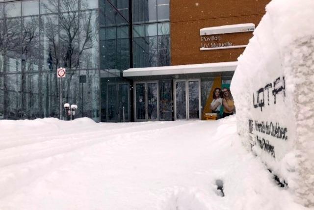 Dix représentants de l'Université du Québec à Trois-Rivières font partie du club sélect du 2 % des experts les plus cités au monde