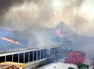 Incendie majeur à Sainte-Clotilde-de-Horton – Les pompiers en renfort pour sauver les animaux