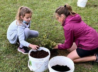 Conservation de la biodiversité – Plus de 225 élèves s'initient à la plantation d'arbres dans la MRC de Drummond